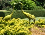 GardenDrum Anne Latreille 2 bird sculpture