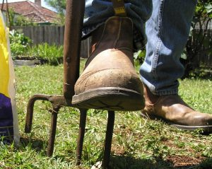 Use a garden fork to aerate a compacted lawn