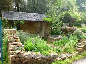 'Naturally Dry' garden designed by Vicky Harris, Chelsea Flower Show 2012