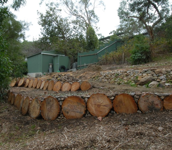GardenDrum HMcKerral pine logs cut into lengths made good temporary on french garden design, color garden design, water garden design, butterfly garden design, kitchen garden design, laying out garden design, wood garden design, knot garden design, food garden design, botanical garden design, modern garden design, circle garden design, bulb garden design, white garden design, bog garden design, wildlife garden design, corner garden design, natural garden design, forest garden design, shade garden design,