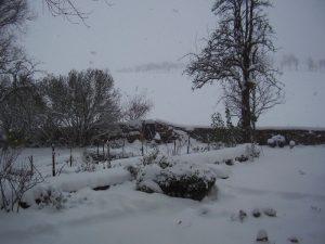 GardenDrum UFeistel Garden in winter 2009