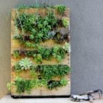 vertical garden bridgman