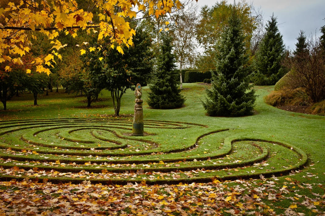 Wychwood's famous labyrinth in autumn. Photo Peter Cooper