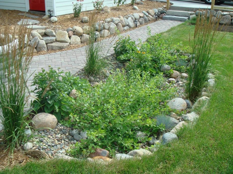 Make a rain garden GardenDrum