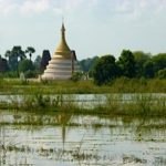 Pagodas, paddies and water lilies