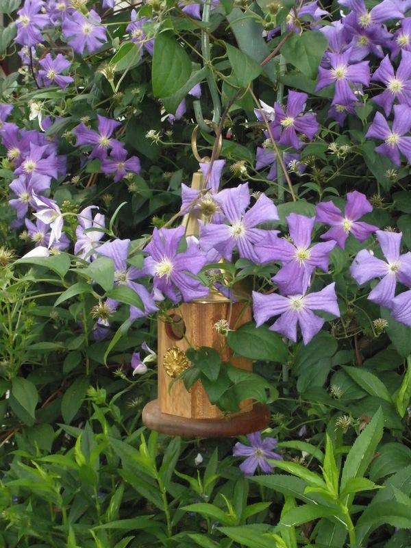 Tammy Schmitt Casa Mariposa - invertebrate garden - birdhouse
