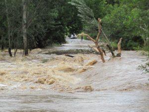 Flooding in Kruger NP5