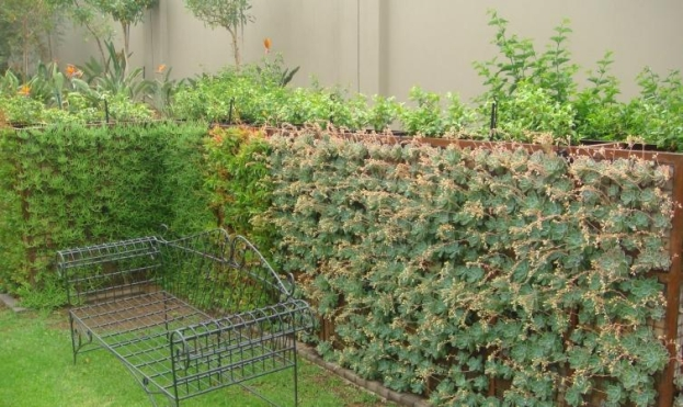 gabion green wall be badec bros deco pretoria sa - Gabion Walls Design