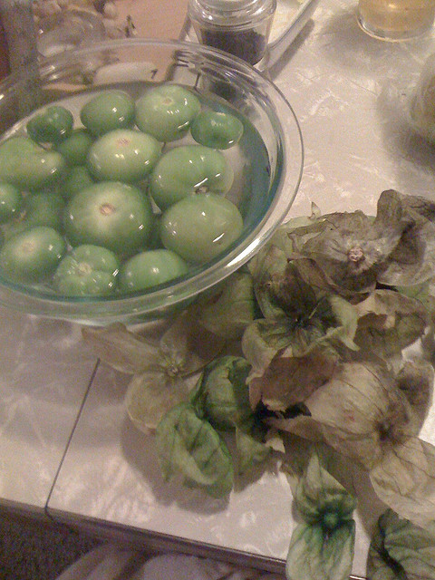 Preparing tomatillo salsa by joannapoe