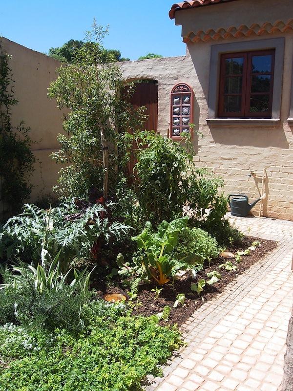 The kitchen garden in February