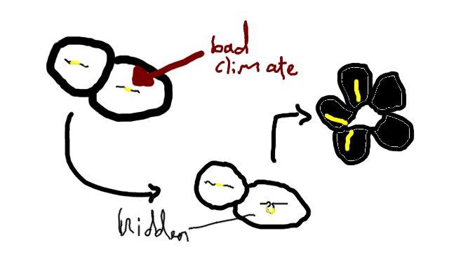 Bumblebee petunia hidden genes illustration by Sophie Frentz