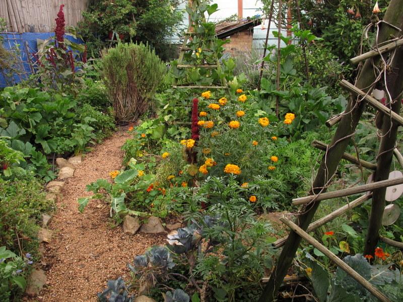 Jane's Delicious Garden (3)