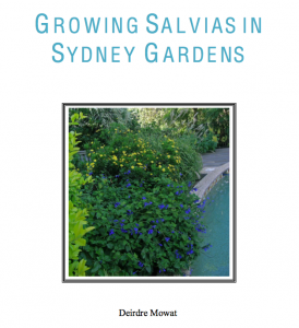 Growing Salvias in Sydney Gardens by Deirdre Mowat
