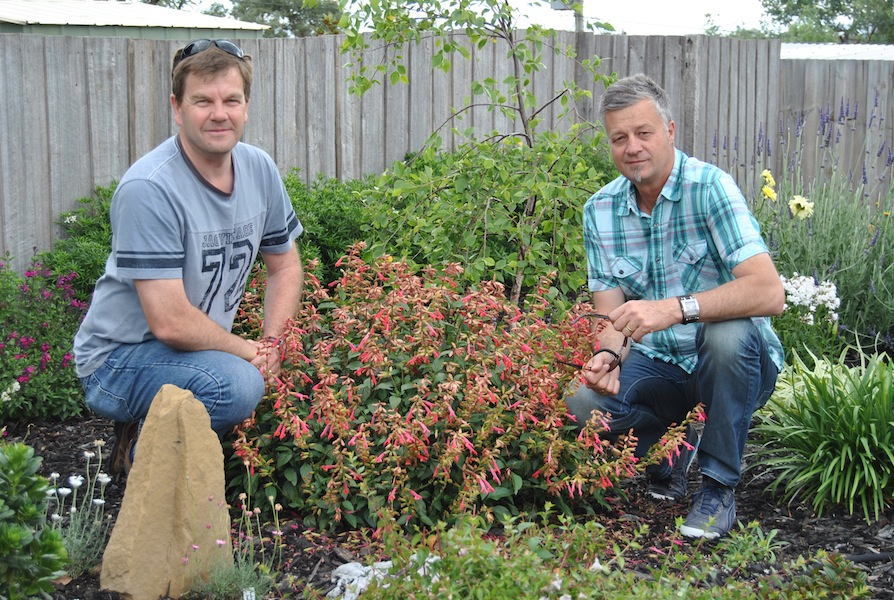 Howard Bentley and Steve Eggleton of PGA with Salvia 'Ember's Wish'