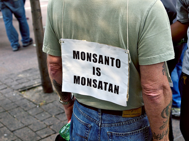 monsatan and the bad seed Bad seed video about gmo and genetically modified crops: monsanto's seedy legacy in addition to their battle against farmers, the newest buzz about the corporation is the speculation that their gm seeds are linked to the die-off of bees.