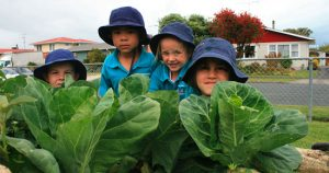 NZ Garden to Table Trust