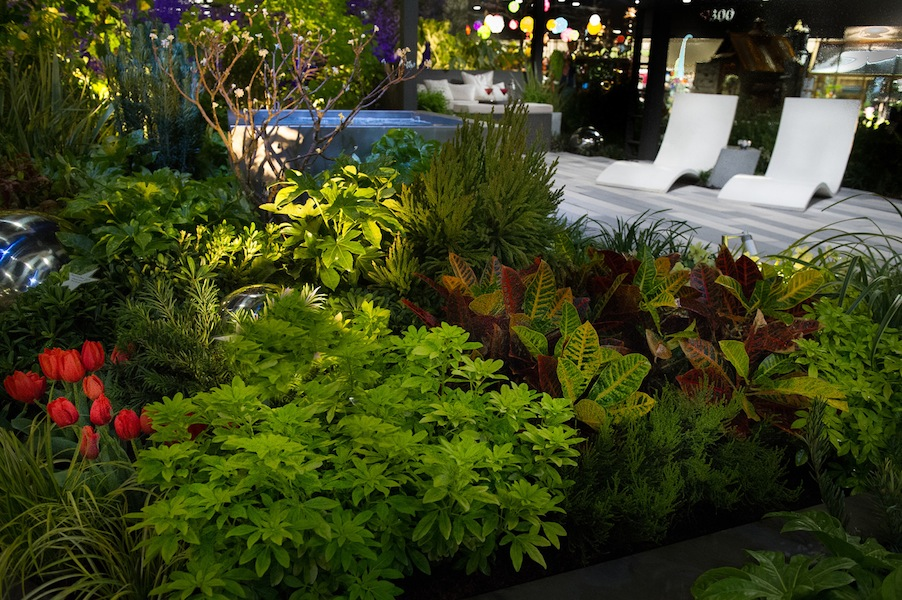 Sublime-Garden-Design-at-the-Northwest-Flower-and-Garden-Show-2013 colourful foliage
