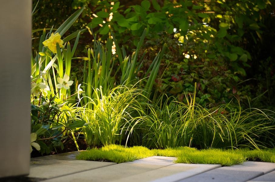 Sublime-Garden-Design-at-the-Northwest-Flower-and-Garden-Show-2013 lighting