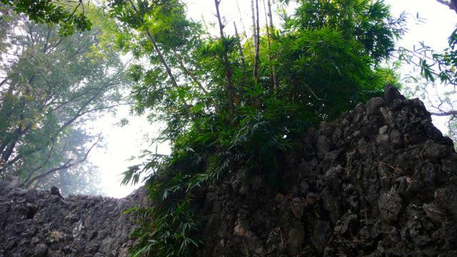 The Rock Garden at Chandigarh07
