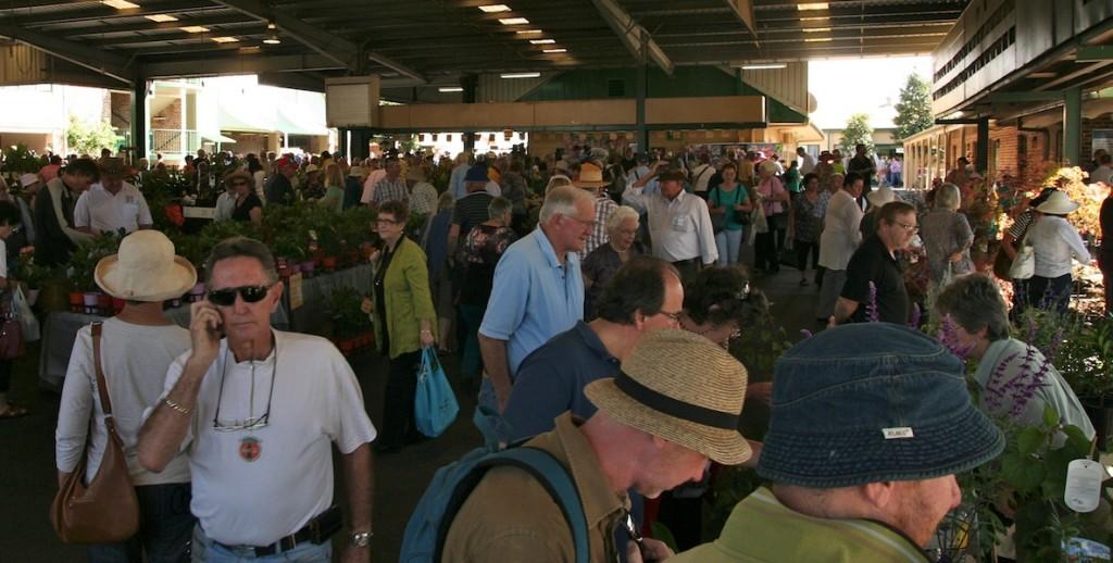 Big crowds at the Plant Collectors' Fair 2013