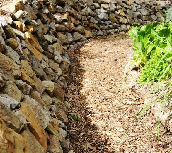 Stone retaining wall with planting on opposite side of path