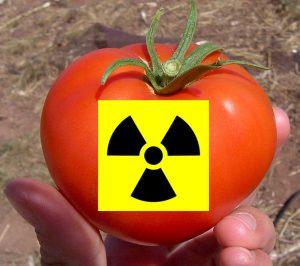 Irradiated tomato