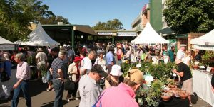 Plant Collectors' Fair 2013