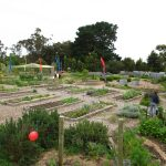 Crib Point Community Garden, called 'The Crib'
