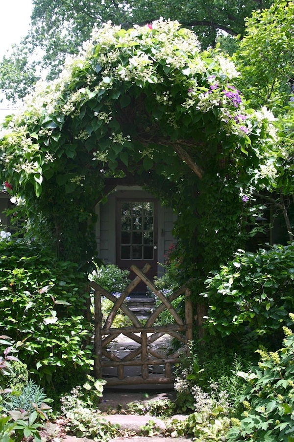 best vine-covered arbor