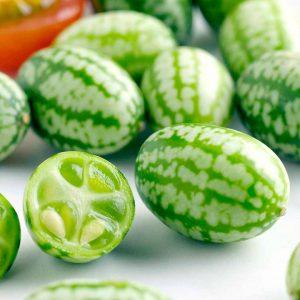 cucamelon suttons seeds