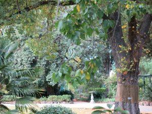 Bishopscourt garden, Melbourne