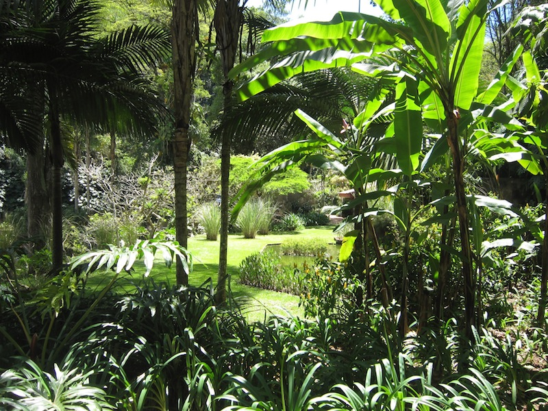 Burle Marx Raul De Souza Martins garden