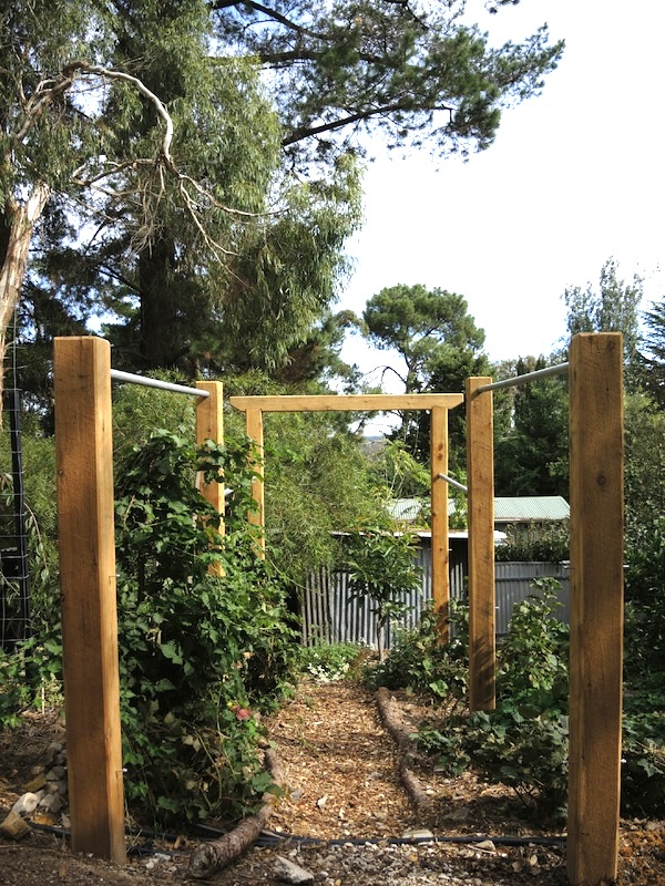 Fruit espalier construction Helen McKerral1