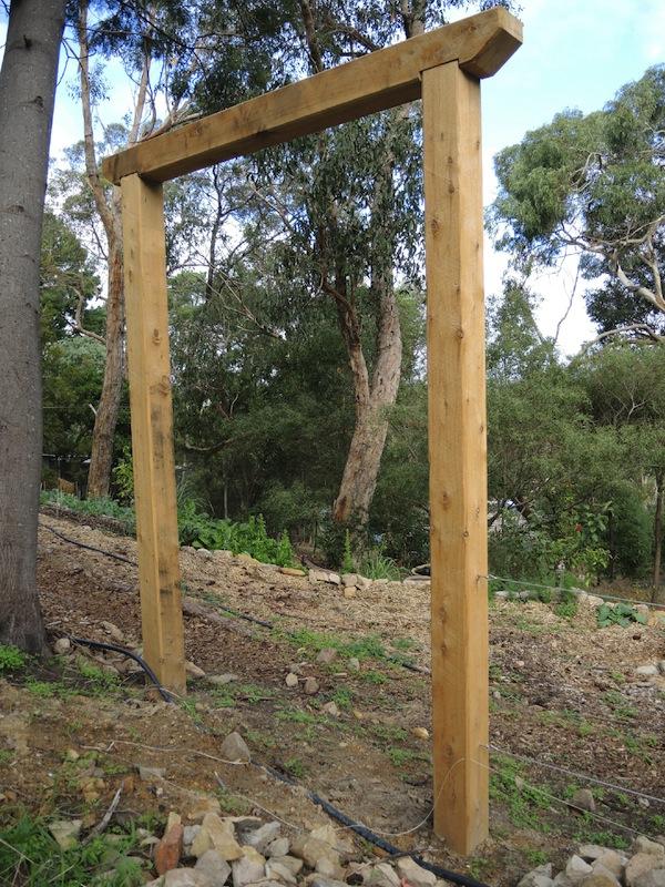 Fruit espalier construction Helen McKerral2