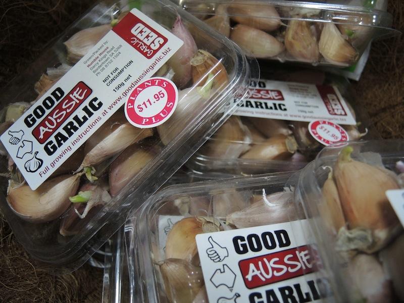 Good Aussie Garlic