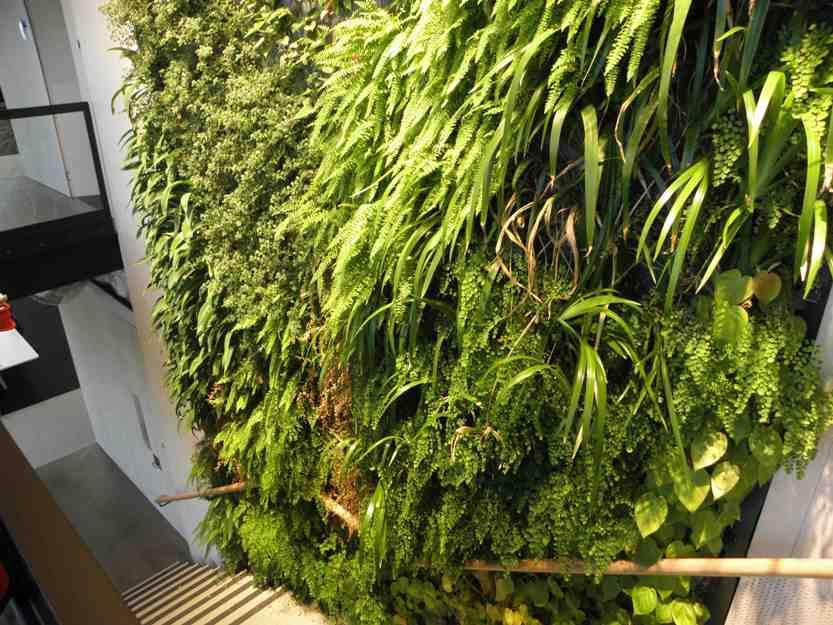Origin Energy Greenwall, Melbourne