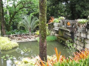 Sitio, Burle Marx. Granite pond and surrounding bromeliads. Photo Paul Urquhart