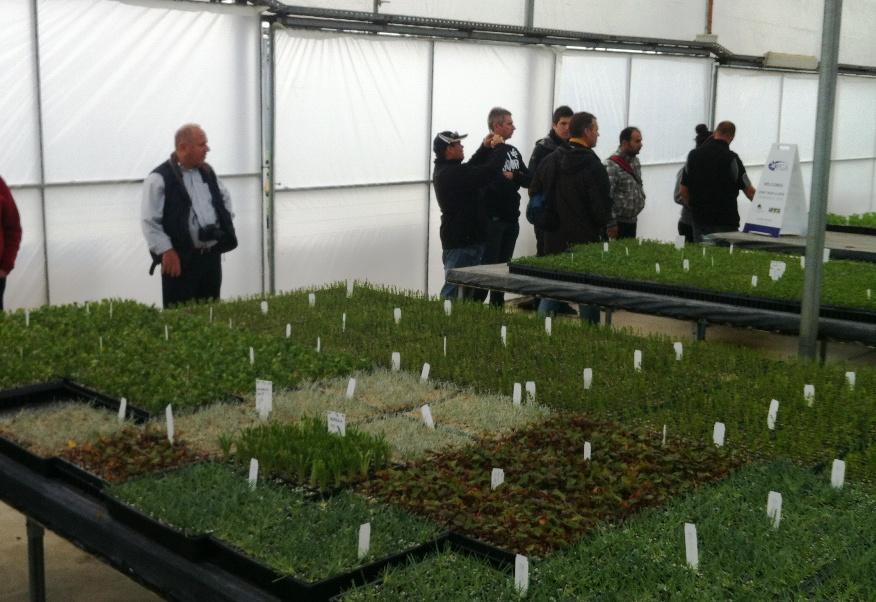 Enjoying the tour at Plant Growers Australia