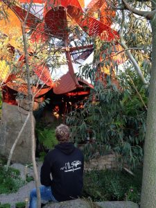 Me and the Australian garden pod Chelsea Flower Show 2013
