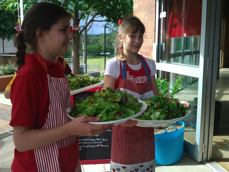 Students at Mansfield serve lunch they prepared
