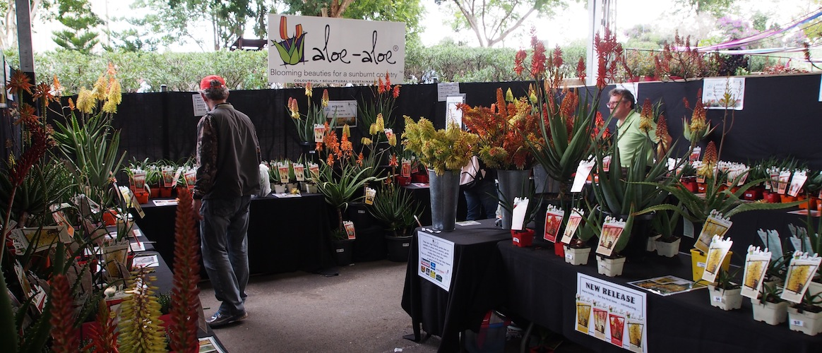 Mike Dent of Aloe Aloe had sold lots of stock by the end of the first day. Queensland Garden Expo 2013