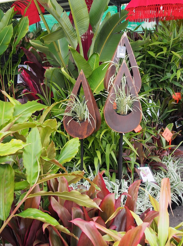Queensland garden expo new products gardendrum for Qld garden design ideas