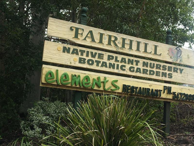 Fairhill Nursery