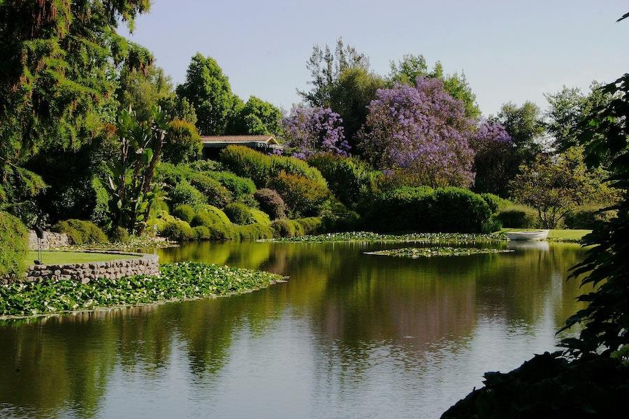 Lake at the Allende garden. Design Juan Grimm