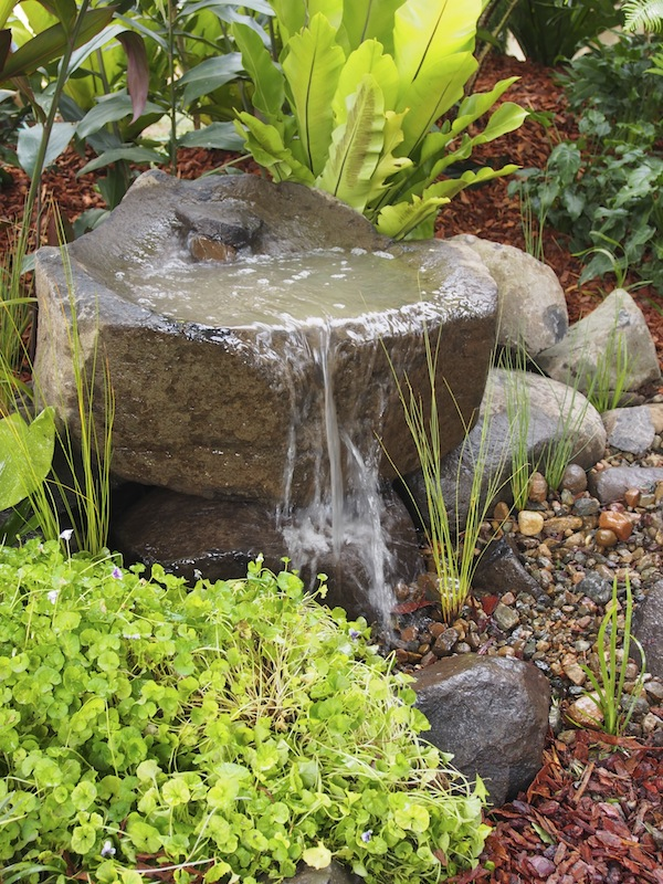 Pin by gary stowe on small ponds water features pinterest for Small backyard water features