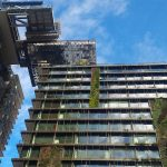 Central Park Sydney greenwall Photo Katherine Longhurst7