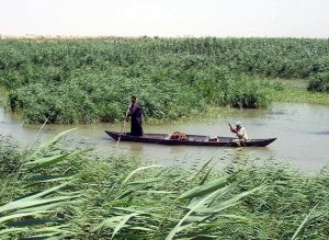 Ma'dan arabs in mesopotamian marshlands