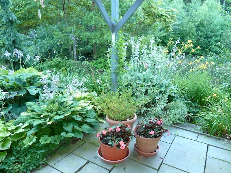 My back garden in August. Design & photo Maria von Brincken -