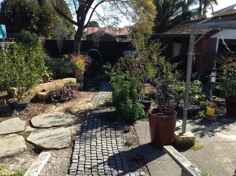 The garden today with linkstone cobbled path