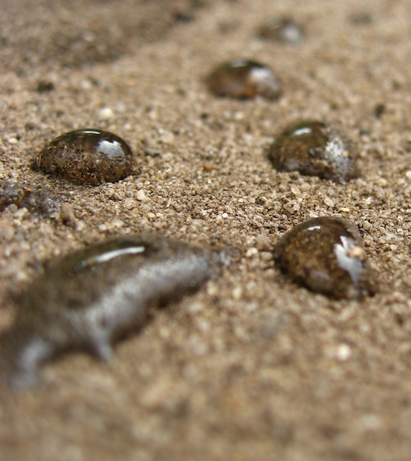 Water droplets on hydrophobic sandy soil